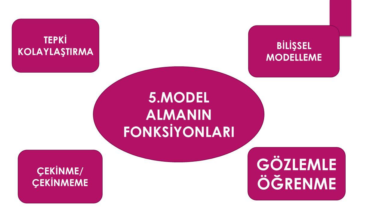 5.MODEL ALMANIN FONKSİYONLARI