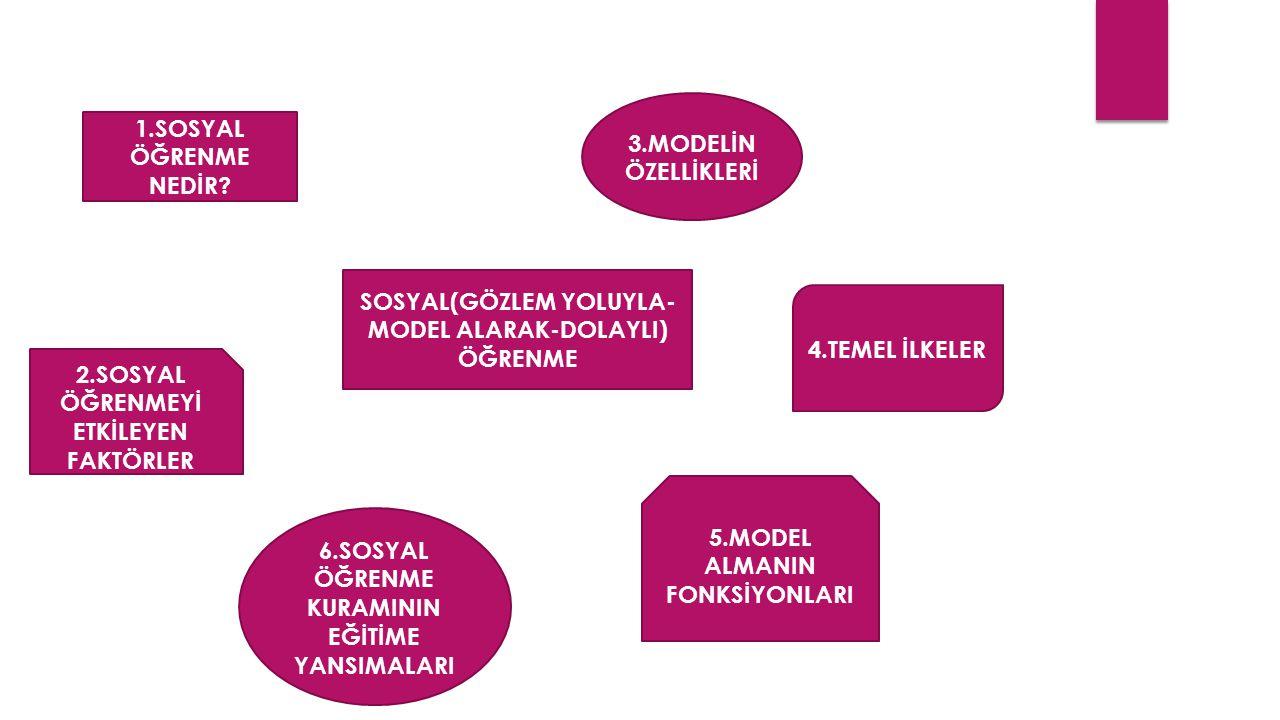 SOSYAL(GÖZLEM YOLUYLA-MODEL ALARAK-DOLAYLI) ÖĞRENME 4.TEMEL İLKELER