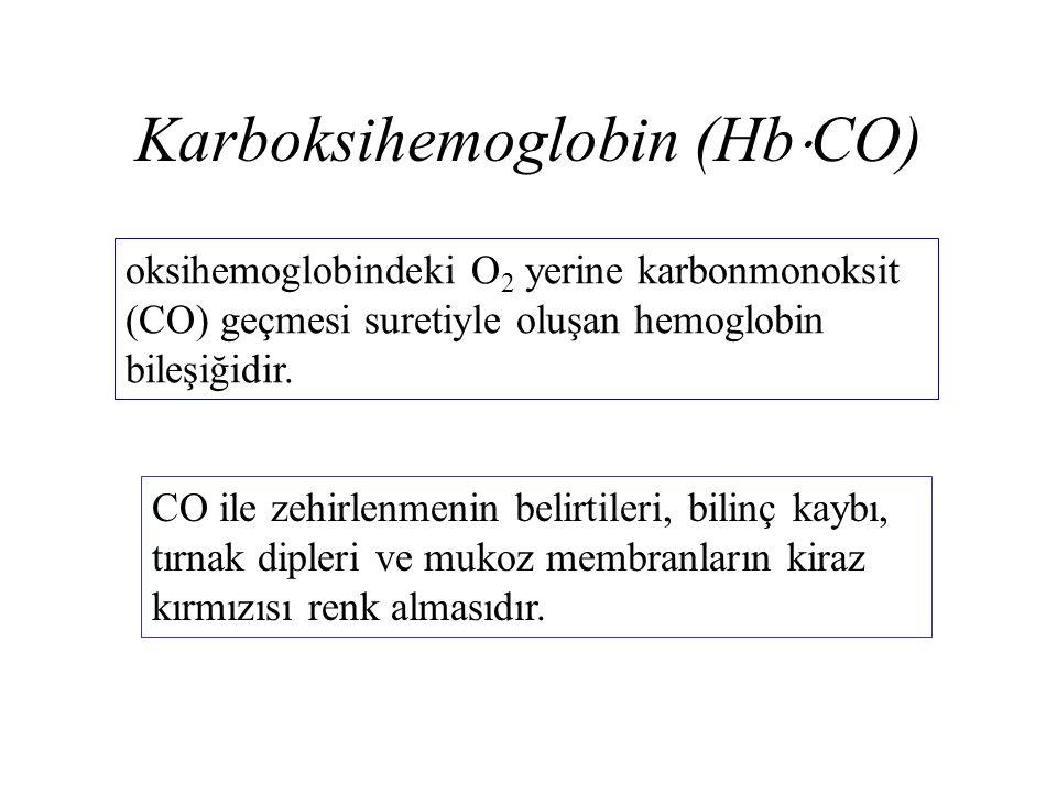 Karboksihemoglobin (HbCO)