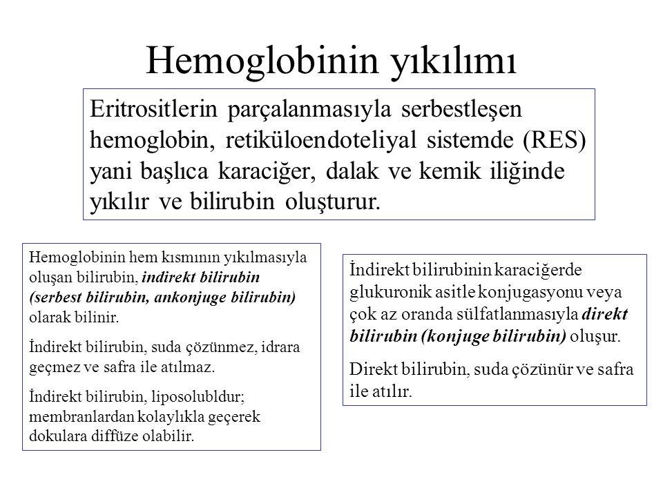 Hemoglobinin yıkılımı