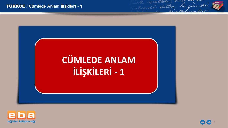 CÜMLEDE ANLAM İLİŞKİLERİ - 1