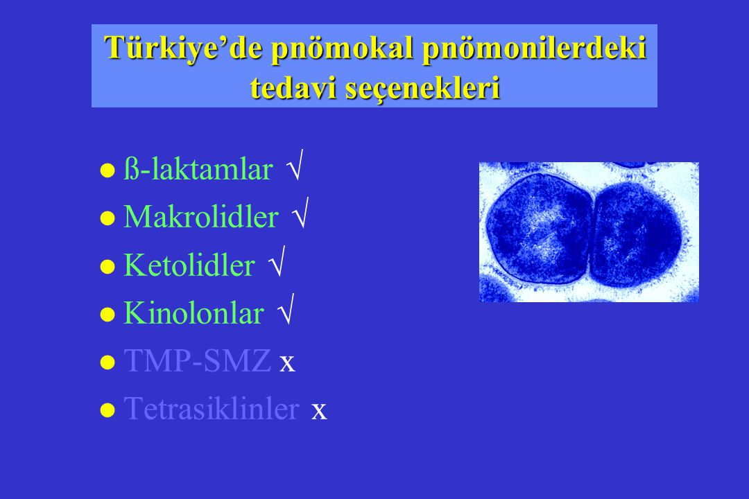 Türkiye'de pnömokal pnömonilerdeki tedavi seçenekleri
