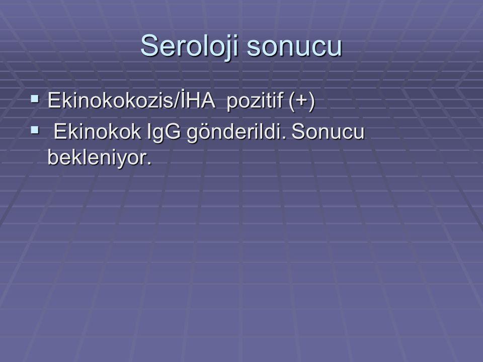 Seroloji sonucu Ekinokokozis/İHA pozitif (+)