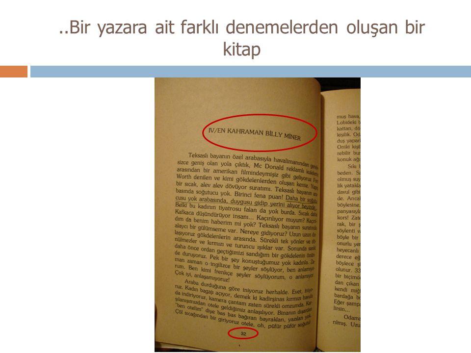 ..Bir yazara ait farklı denemelerden oluşan bir kitap