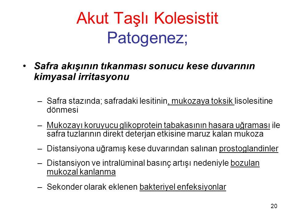 Akut Taşlı Kolesistit Patogenez;