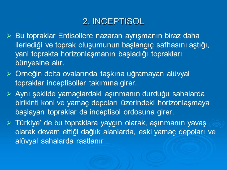 2. INCEPTISOL