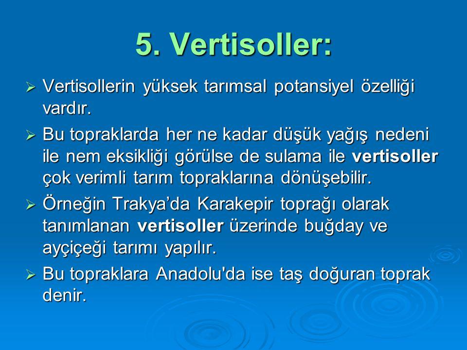 5. Vertisoller: Vertisollerin yüksek tarımsal potansiyel özelliği vardır.