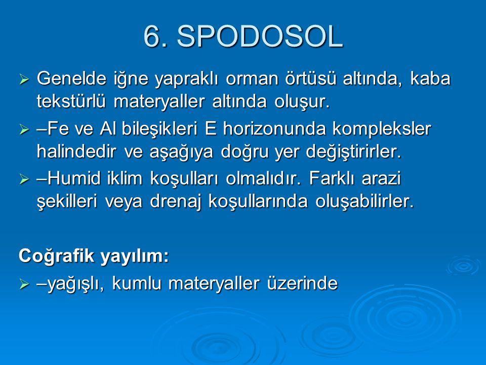 6. SPODOSOL Genelde iğne yapraklı orman örtüsü altında, kaba tekstürlü materyaller altında oluşur.