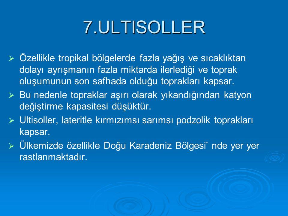 7.ULTISOLLER