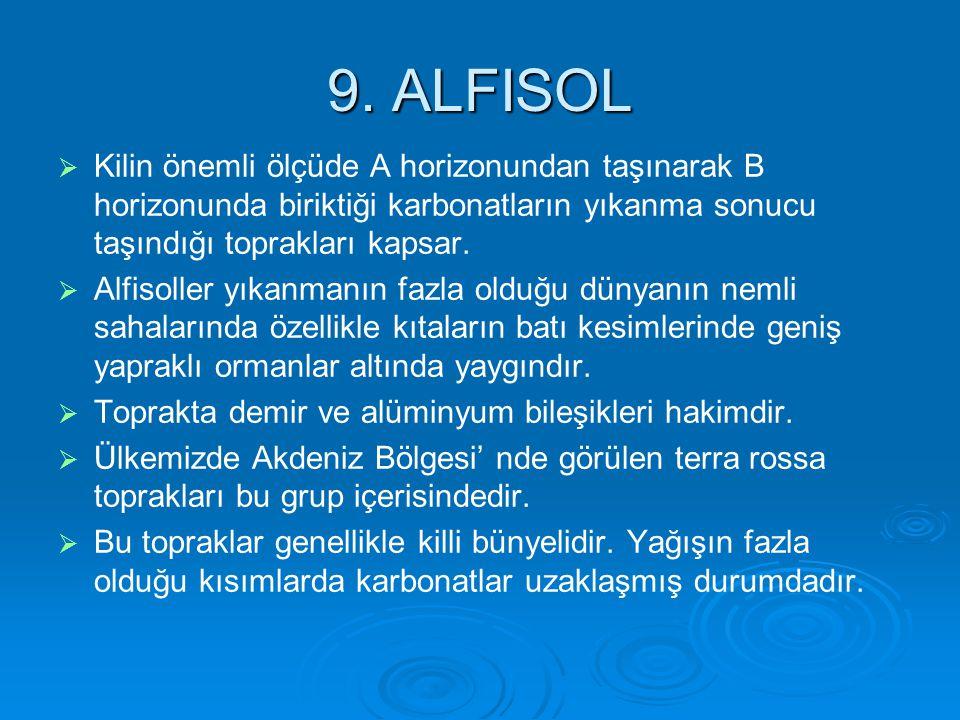 9. ALFISOL Kilin önemli ölçüde A horizonundan taşınarak B horizonunda biriktiği karbonatların yıkanma sonucu taşındığı toprakları kapsar.
