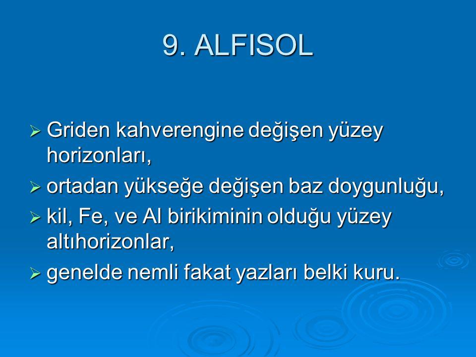 9. ALFISOL Griden kahverengine değişen yüzey horizonları,