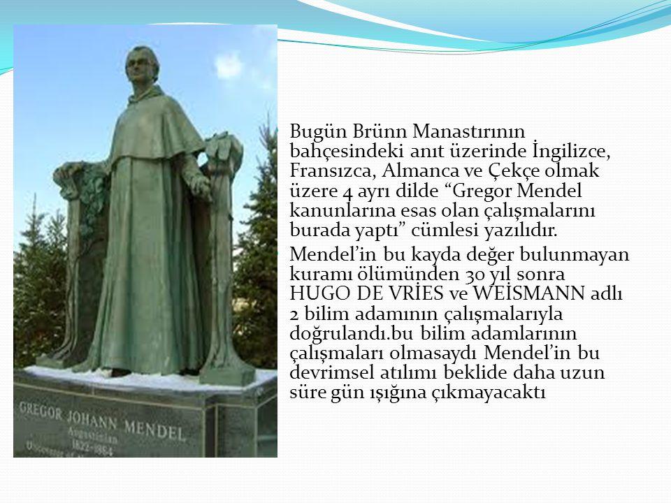 Bugün Brünn Manastırının bahçesindeki anıt üzerinde İngilizce, Fransızca, Almanca ve Çekçe olmak üzere 4 ayrı dilde Gregor Mendel kanunlarına esas olan çalışmalarını burada yaptı cümlesi yazılıdır.