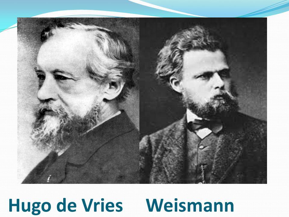 Hugo de Vries Weismann