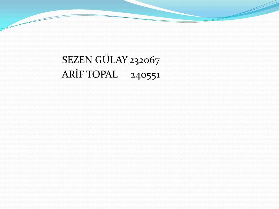 SEZEN GÜLAY 232067 ARİF TOPAL 240551