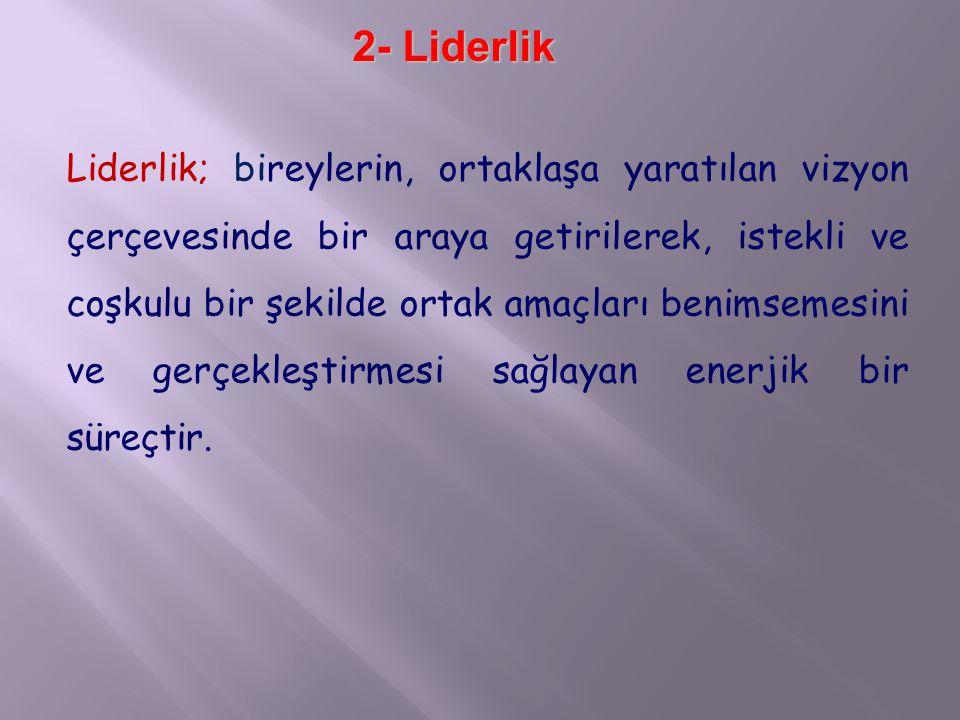 2- Liderlik