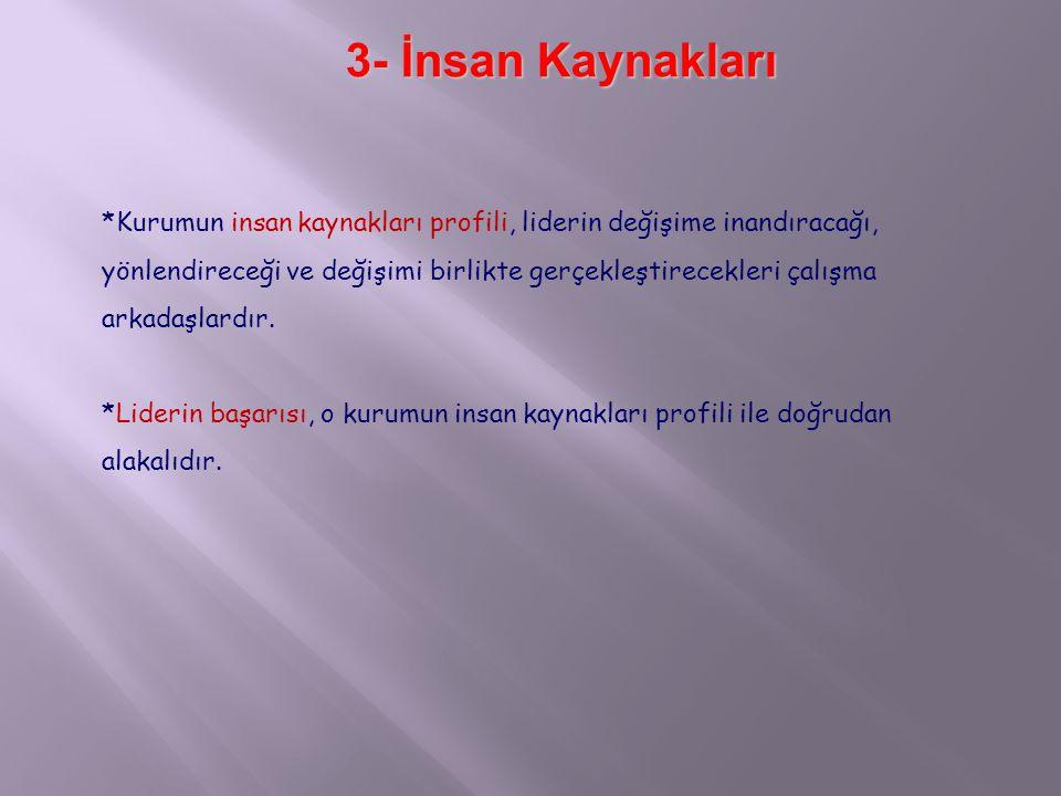 3- İnsan Kaynakları