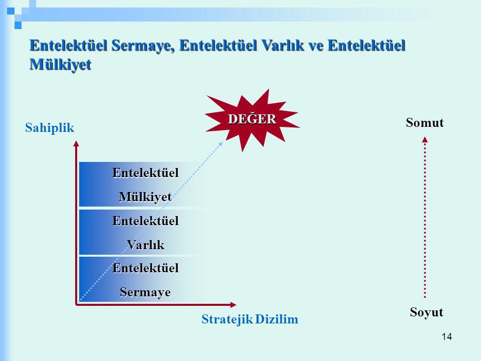 Entelektüel Sermaye, Entelektüel Varlık ve Entelektüel Mülkiyet