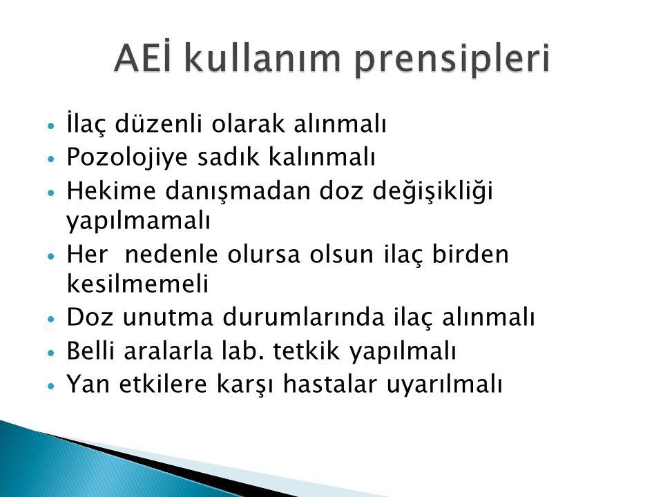 AEİ kullanım prensipleri
