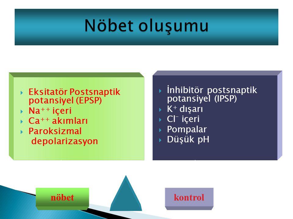 Nöbet oluşumu nöbet kontrol İnhibitör postsnaptik potansiyel (IPSP)