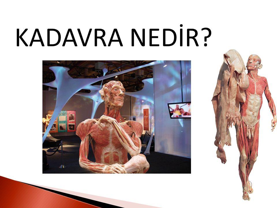 KADAVRA NEDİR