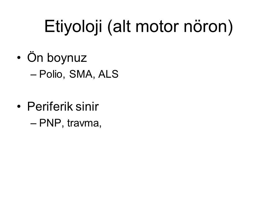 Etiyoloji (alt motor nöron)