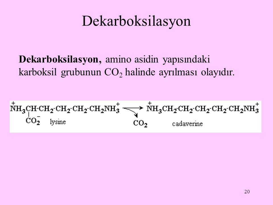Dekarboksilasyon Dekarboksilasyon, amino asidin yapısındaki karboksil grubunun CO2 halinde ayrılması olayıdır.
