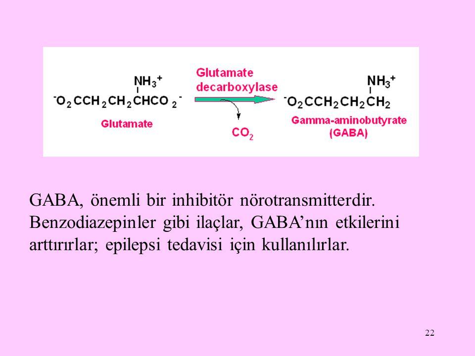 GABA, önemli bir inhibitör nörotransmitterdir