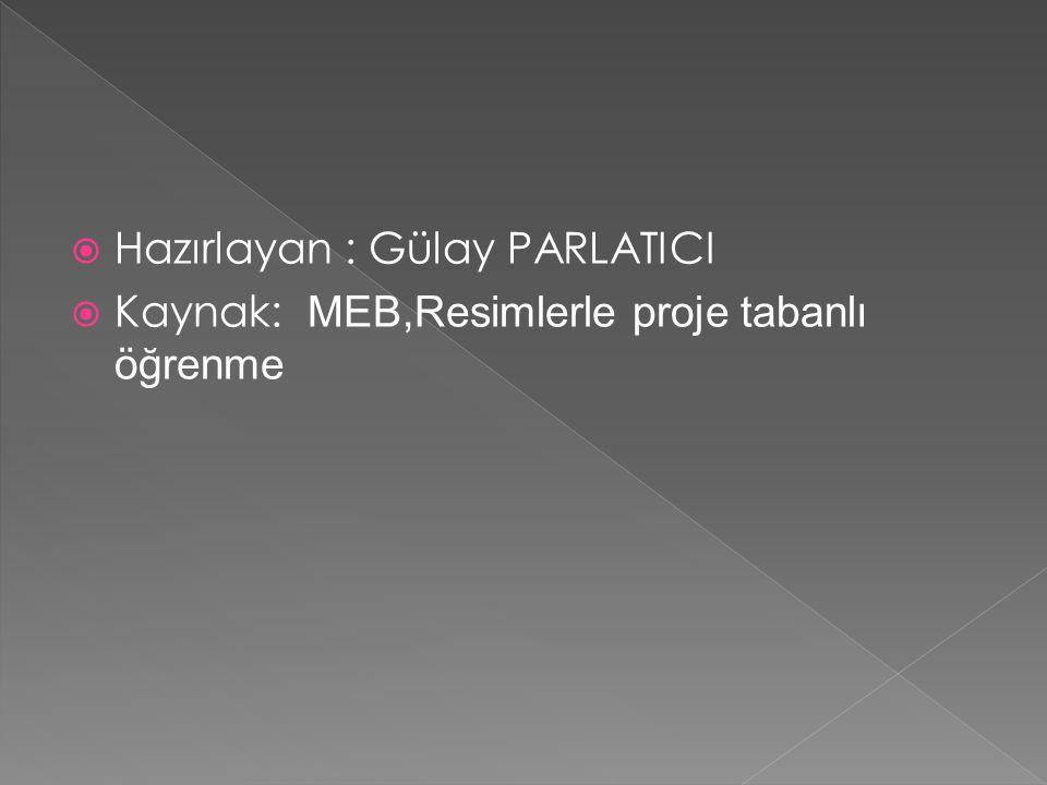 Hazırlayan : Gülay PARLATICI