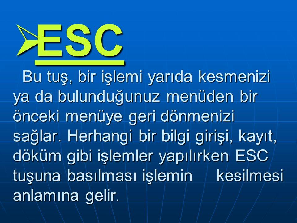 ESC Bu tuş, bir işlemi yarıda kesmenizi ya da bulunduğunuz menüden bir önceki menüye geri dönmenizi sağlar.