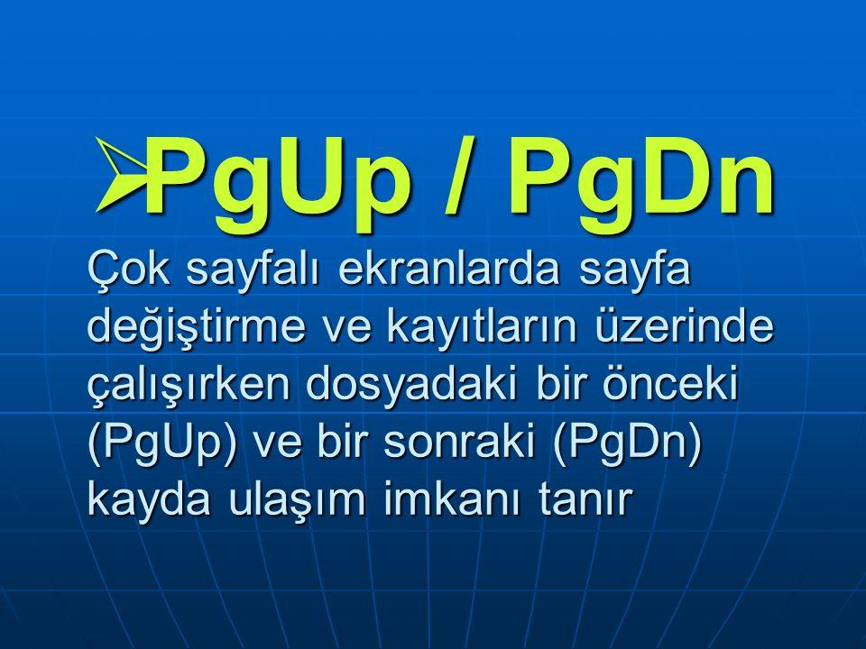 PgUp / PgDn Çok sayfalı ekranlarda sayfa değiştirme ve kayıtların üzerinde çalışırken dosyadaki bir önceki (PgUp) ve bir sonraki (PgDn) kayda ulaşım imkanı tanır
