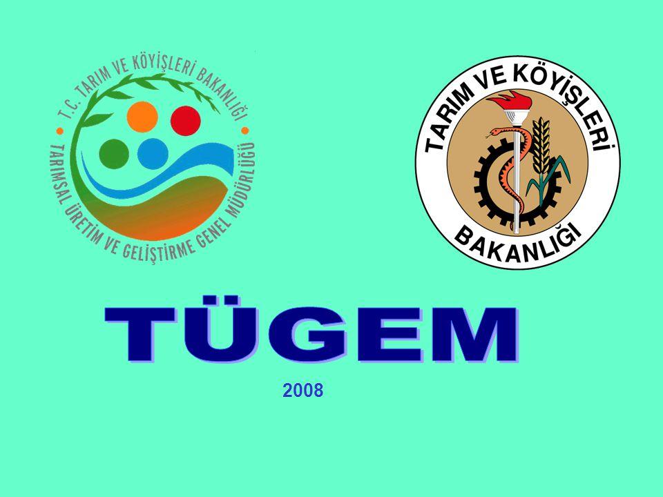 TÜGEM 2008