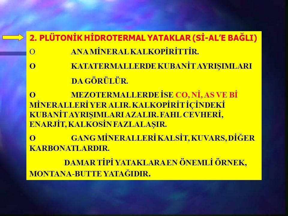 2. PLÜTONİK HİDROTERMAL YATAKLAR (Sİ-AL'E BAĞLI)