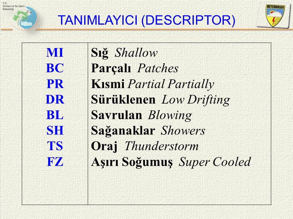 TANIMLAYICI (DESCRIPTOR)