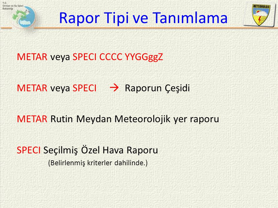 Rapor Tipi ve Tanımlama