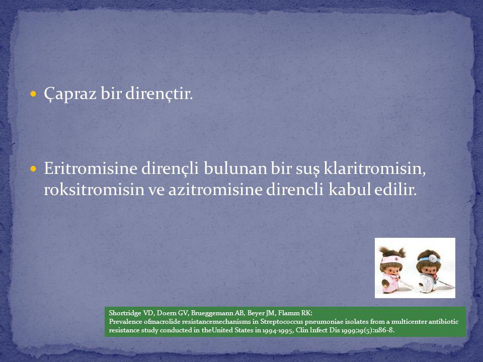 Çapraz bir dirençtir. Eritromisine dirençli bulunan bir suş klaritromisin, roksitromisin ve azitromisine direncli kabul edilir.