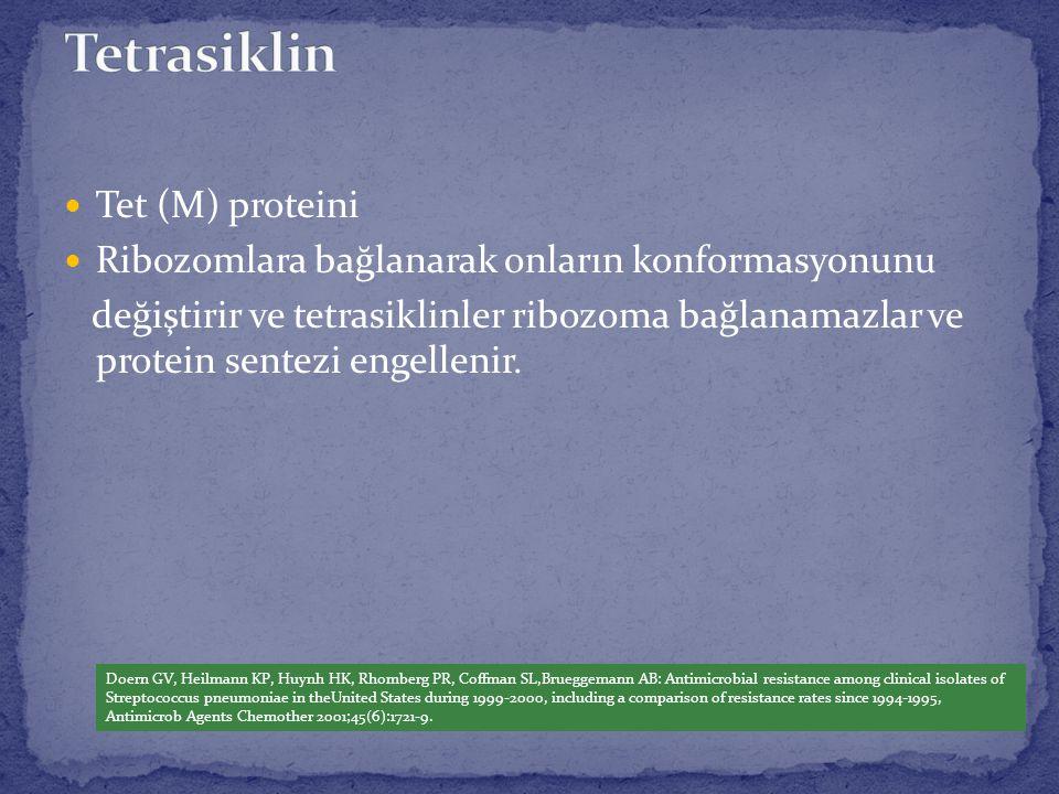 Tetrasiklin Tet (M) proteini