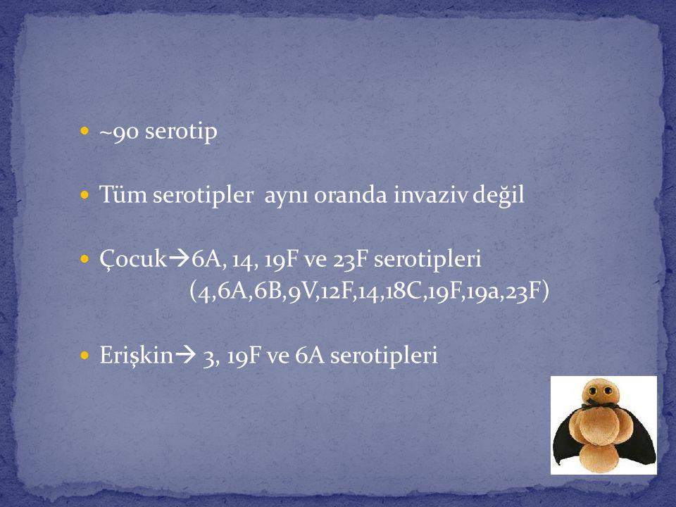 ~90 serotip Tüm serotipler aynı oranda invaziv değil. Çocuk6A, 14, 19F ve 23F serotipleri. (4,6A,6B,9V,12F,14,18C,19F,19a,23F)