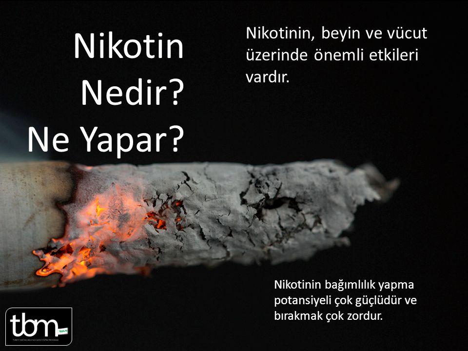 Sayfa 2-3 Nikotin. Nedir Ne Yapar Nikotinin, beyin ve vücut üzerinde önemli etkileri vardır.