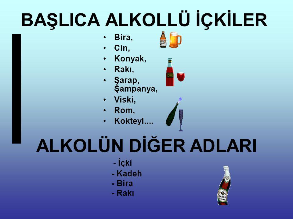 BAŞLICA ALKOLLÜ İÇKİLER