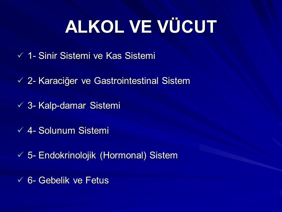 ALKOL VE VÜCUT 1- Sinir Sistemi ve Kas Sistemi