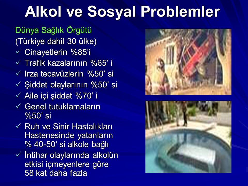 Alkol ve Sosyal Problemler