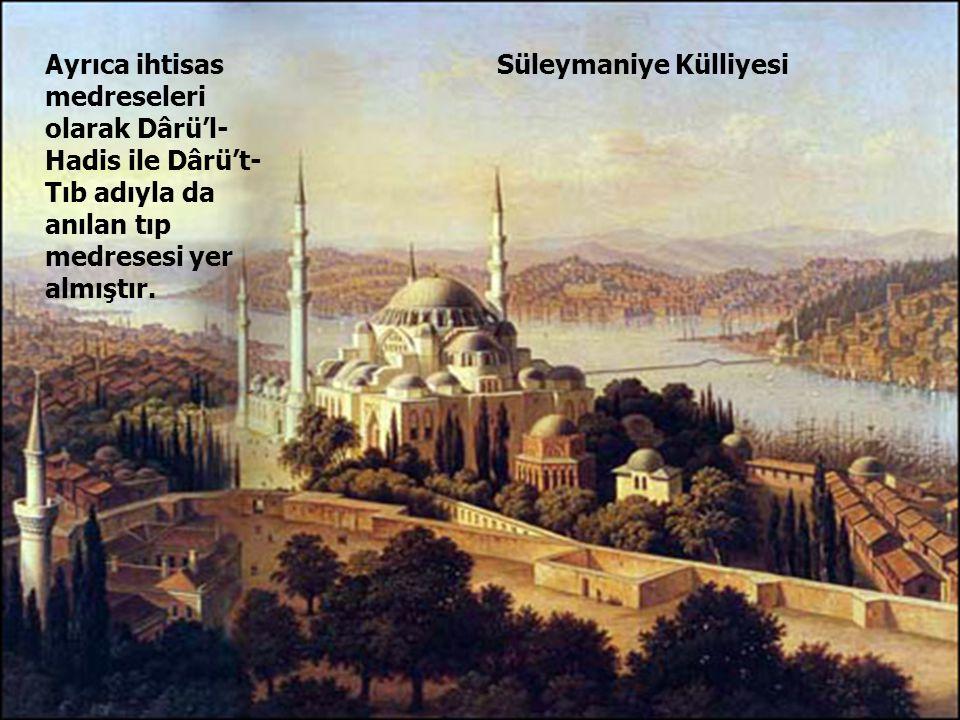Ayrıca ihtisas medreseleri olarak Dârü'l-Hadis ile Dârü't-Tıb adıyla da anılan tıp medresesi yer almıştır.