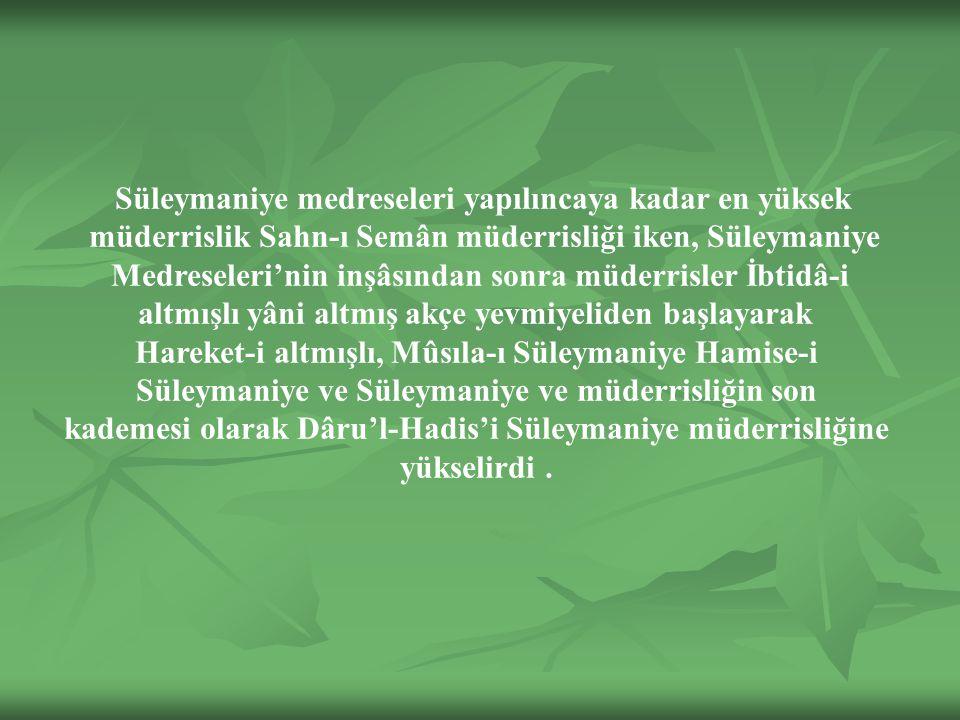kademesi olarak Dâru'l-Hadis'i Süleymaniye müderrisliğine