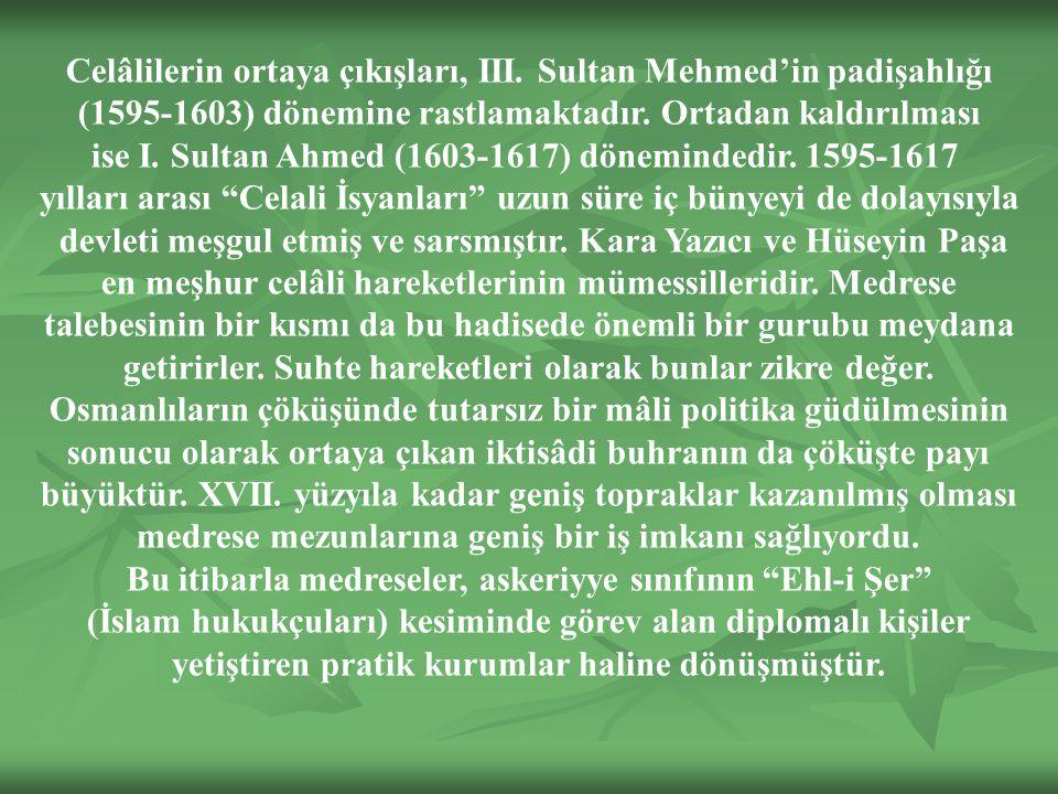 Celâlilerin ortaya çıkışları, III. Sultan Mehmed'in padişahlığı
