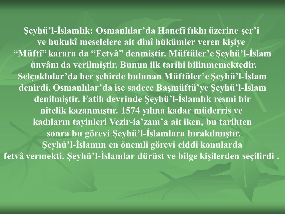 Şeyhü'l-İslamın en önemli görevi ciddi konularda