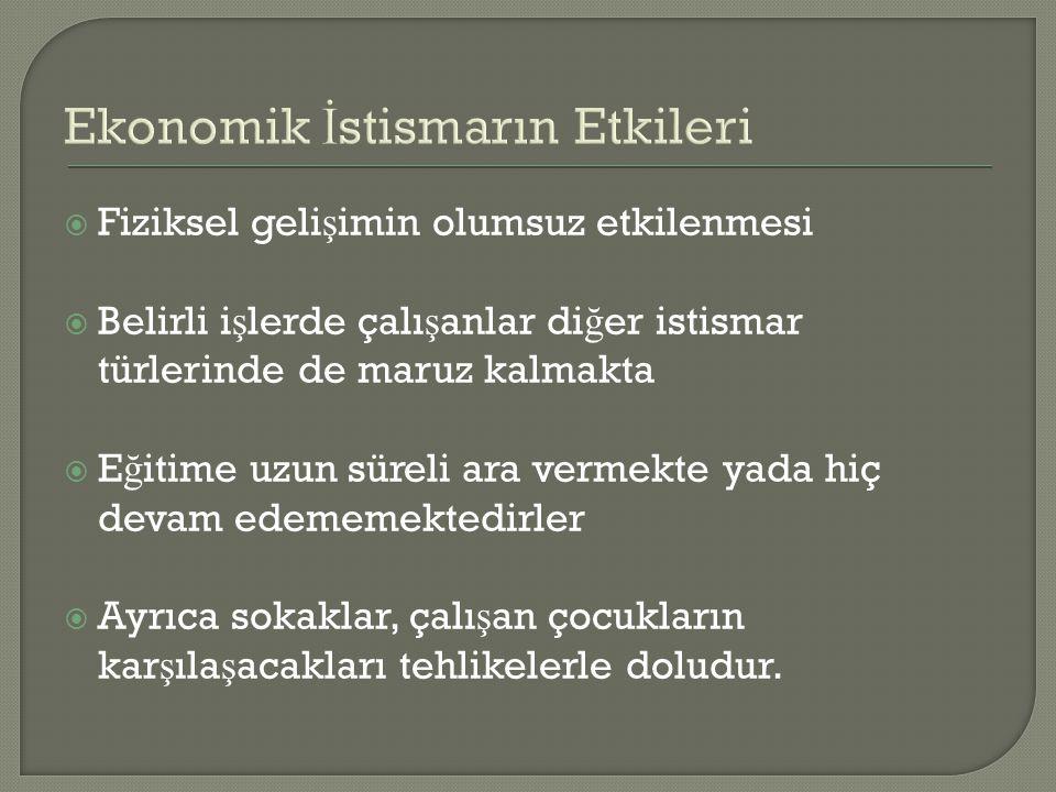 Ekonomik İstismarın Etkileri