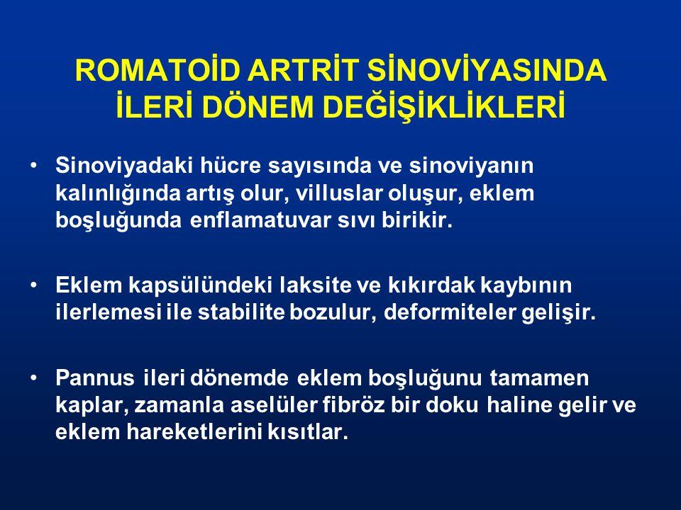ROMATOİD ARTRİT SİNOVİYASINDA İLERİ DÖNEM DEĞİŞİKLİKLERİ
