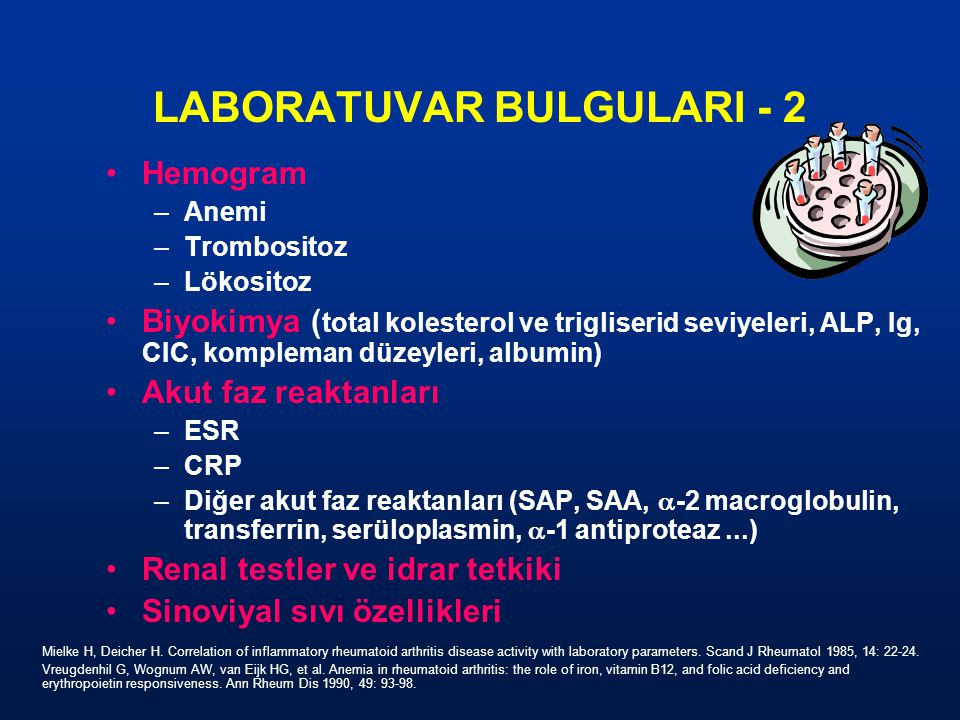 LABORATUVAR BULGULARI - 2