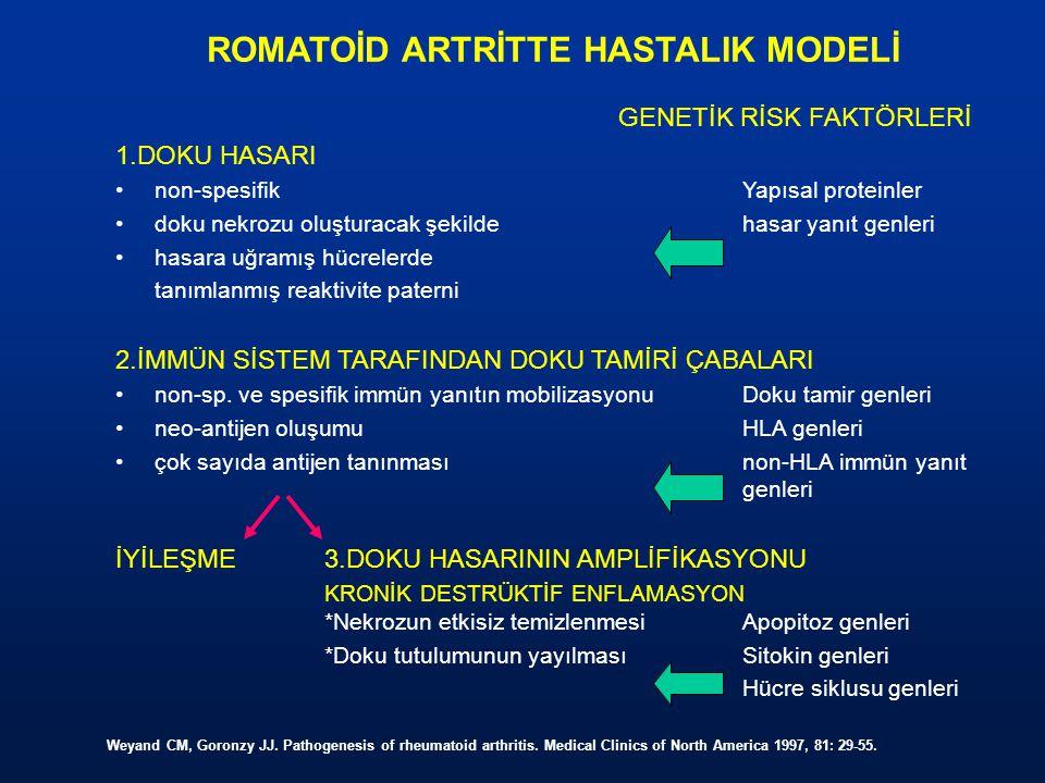 ROMATOİD ARTRİTTE HASTALIK MODELİ