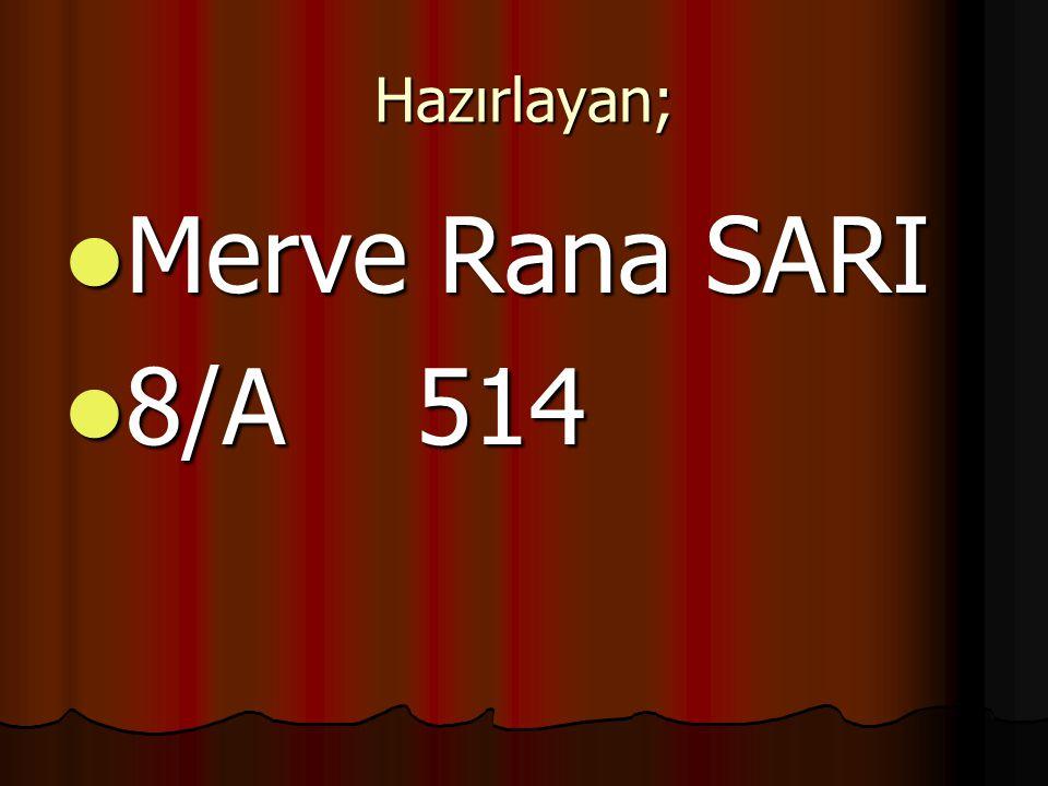 Hazırlayan; Merve Rana SARI 8/A 514